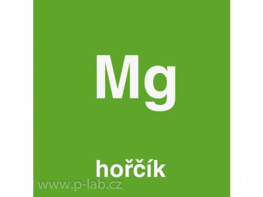 horcik_2093.jpg