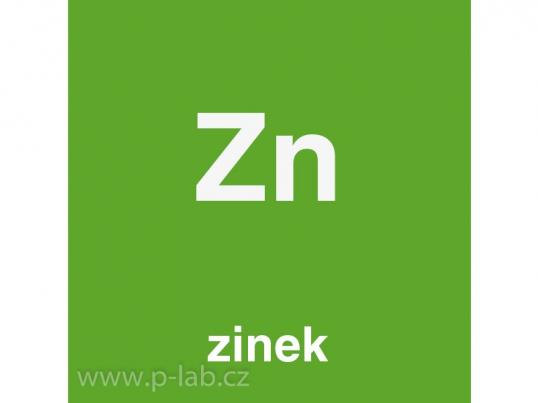 zinek_2099.jpg